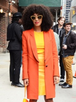 http://www3.pictures.zimbio.com/fp/Solange+Knowles+Solange+Knowles+Stops+Letterman+hccMNFh3A_ml.jpg